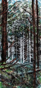 Woodland for card ( oil pastel ) (2)